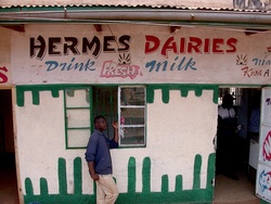 A milk bar in Kenya, serving fresh, locally produced milk (Photo: ILRI/Elsworth).