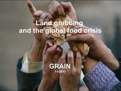 Land grabbing and the global food crisis - presentation-image
