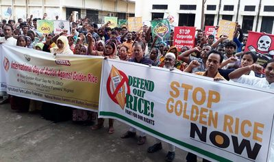 Farmers and consumers commemorate Golden Rice uprooting victory amid renewed push for field trials-image