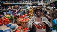Supermarkets out of Africa! Food systems across the continent are doing just fine without them-image