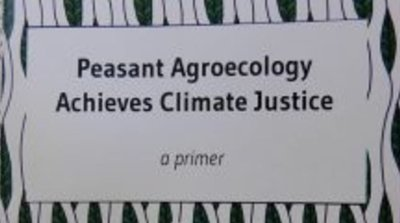 Via Campesina reports on climate justice and agroecology in Africa-image