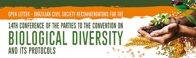 Open letter - Brazilian civil society recommendations for the 14th Conference of the Parties of the Convention on Biological Diversity and its protocols-image