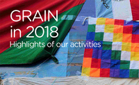 GRAIN's 2018 activity report-image