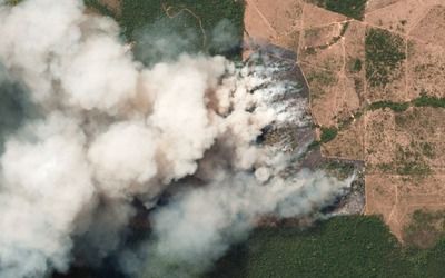 Burning the Amazon is a crime against humanity-image