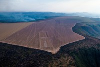 Harvard and TIAA's farmland grab in Brazil goes up in smoke-image
