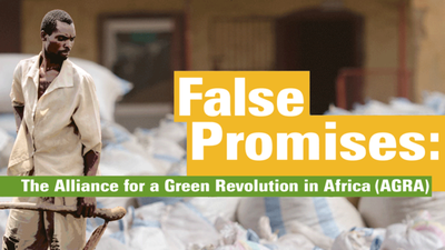 False promises: The Alliance for a Green Revolution in Africa (AGRA)-image
