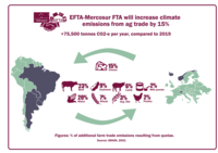 EFTA-Mercosur: another low blow to climate, peoples' rights and food sovereignty-image