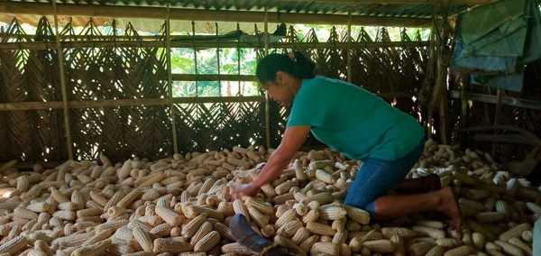 Agroecological_farmers_from_Barangay_Bis